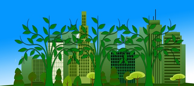 1/05. Экологическое образование детей в городском округе Щёлково Московской области.